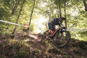 WES Bologna: Tutto pronto per la prima tappa italiana